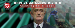 Statement by the IGC on the occasion of the final second instance verdict to Radovan Karadzic